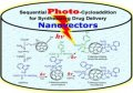 Functionalization of [60]Fullerene through photochemical reaction for fulleropyrrolidine nanovectors synthesis : Experimental and theoretical approaches